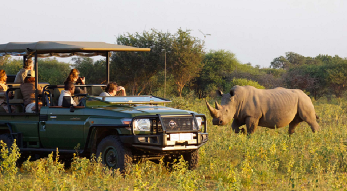 African Safari: A first-timer's guide